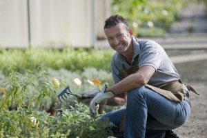 haveanlægsgartner